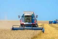 Harvester mows wheat