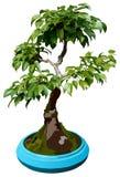 krasnolud drzewo ilustracyjny ilustracji