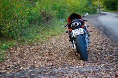 KRASNOYARSK, RUSSIA - SEPTEMBER 1, 2017: Red and black sportbike Honda CBR 600 RR 2005 PC37. Autumn yellow leaves.  stock photo