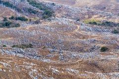 Krasu krajobraz Hiraodai wapnia plateau Obraz Stock
