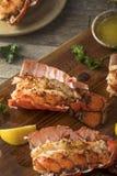 Kraszeni Piec homarów ogony Zdjęcie Stock