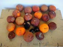 Kraszone pomarańcze Zdjęcia Royalty Free