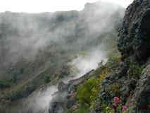 Krater av en slocknad vulkan, Italien Mount Vesuvius Arkivbild