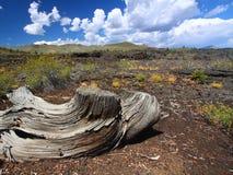 Krater des Mond-nationalen Denkmales Stockbild