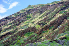 kraterhawaii koko oahu Royaltyfri Fotografi