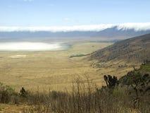 kraterngorongoro Arkivbilder