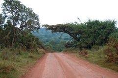 kraterngorongoro Arkivfoto