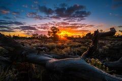 Kraters van de Boomgaard van de Maanduivel ` s bij Zonsopgang stock afbeeldingen