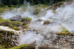 Kraters van de Maan, Meer Taupo, Nieuw Zeeland Stock Afbeelding