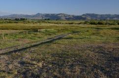 Kraters van de maan NP, Idaho stock fotografie