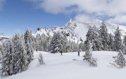 Krateru Jeziorny park narodowy w zimie zdjęcia royalty free