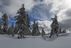 Krateru Jeziorny park narodowy w zimie fotografia royalty free