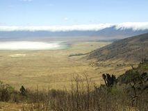 krateru ngorongoro obrazy stock