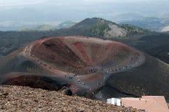 krateru silvestri Obraz Royalty Free