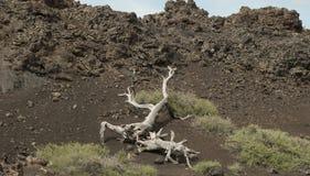 Kratery księżyc park narodowy Zdjęcie Royalty Free