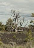 Kratery księżyc park narodowy Obrazy Royalty Free
