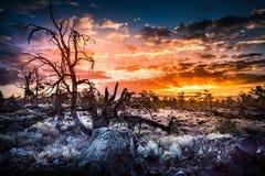 Kratery księżyc ` s Czarci sad przy wschodem słońca zdjęcia stock