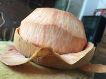 Krathon lokal frukt för sandoricumkoetjape, peelkrathon, gjorde ren frukt i salt vatten Arkivfoton