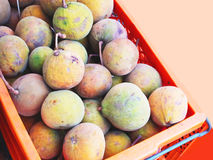 Krathon. Is a tropical fruit that has thick shell and fluffy edible seed coat Stock Photo