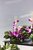 Krathong Royalty Free Stock Image