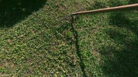Kratta gräsmatta lager videofilmer