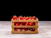 Kratten van tomaten Royalty-vrije Stock Foto's