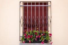 Kratzendes Fenster des Eisens Stockfotografie