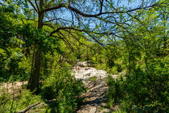 Krause Springs. Spicewood, Texas USA - April 5, 2016: Krause Springs is a popular tourist destination with camping and swimming activities in the Texas Hill royalty free stock photos