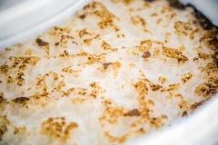 Krausen von Ale Home Brew Fermenting in ein Lebensmittel-Grad-Plastikbu lizenzfreies stockbild