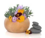 Kraut-und Blumen-Therapie Stockfotografie