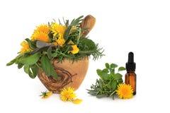 Kraut-und wilde Blumen-Therapie lizenzfreies stockfoto