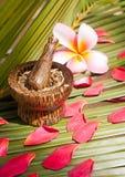 Krautbadekurort und Wellnesskonzept auf Kokosnuss treiben Blätter Lizenzfreies Stockfoto