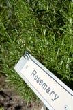 Krautgartenzeichen mit Kräutern Lizenzfreie Stockbilder