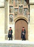 Kravat Regiment-Abdeckungänderung Stockfotografie