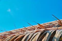 Krawędź dach zakrywa z suchymi popielatymi palmowymi liśćmi przeciw tła błękitnemu pogodnemu niebu Zdjęcie Royalty Free