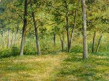 krawędź las Zdjęcie Royalty Free