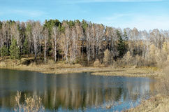 Krawędź mały jezioro z kaczkami Zdjęcia Stock
