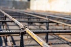 Krawata rebar promienia klatka na budowie Stalowy wzmacnia bar dla zbrojonego betonu zdjęcia royalty free