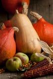 Kürbise, Äpfel und Körner Lizenzfreie Stockbilder