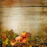 Kürbise und Herbstlaub auf dem hölzernen Hintergrund Stockfotos