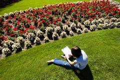 Kreślić kwiatu łóżko Zdjęcia Royalty Free