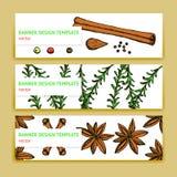 Kreśli pikantność i ziele sztandary w rocznika stylu ilustracja wektor