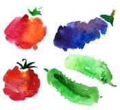 kreśli warzywa Obraz Royalty Free
