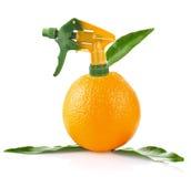 Kreative Auffassung der Orange stockfotografie