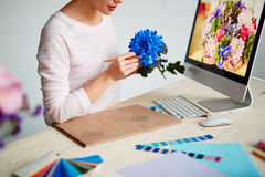 Kreative Blumenillustration Stockfoto