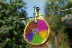 Kreative Orange lizenzfreie stockfotos