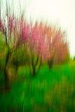 Kreative rote Knospe-Bäume stockfotos