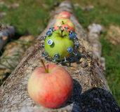 Kreativer Apfel stockbilder