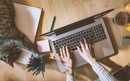 Kreativer Arbeitsplatz: Mädchen, das am computergestützten durch sie arbeitet stockfoto