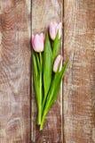 Kreativer Blumen-Hintergrund Stockbild